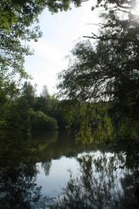 Lake LR